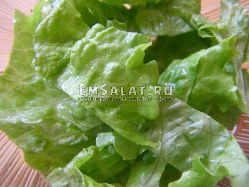 ленточки листа салата