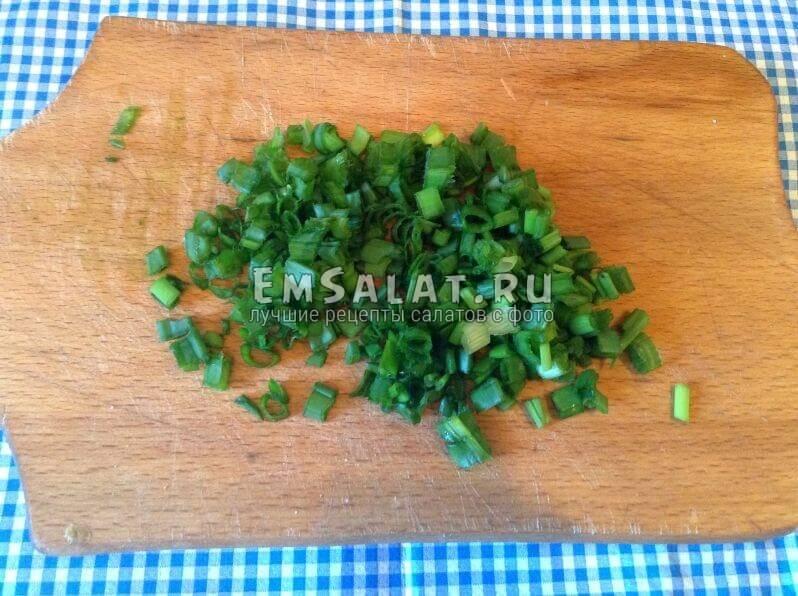 Молодой зеленый лук