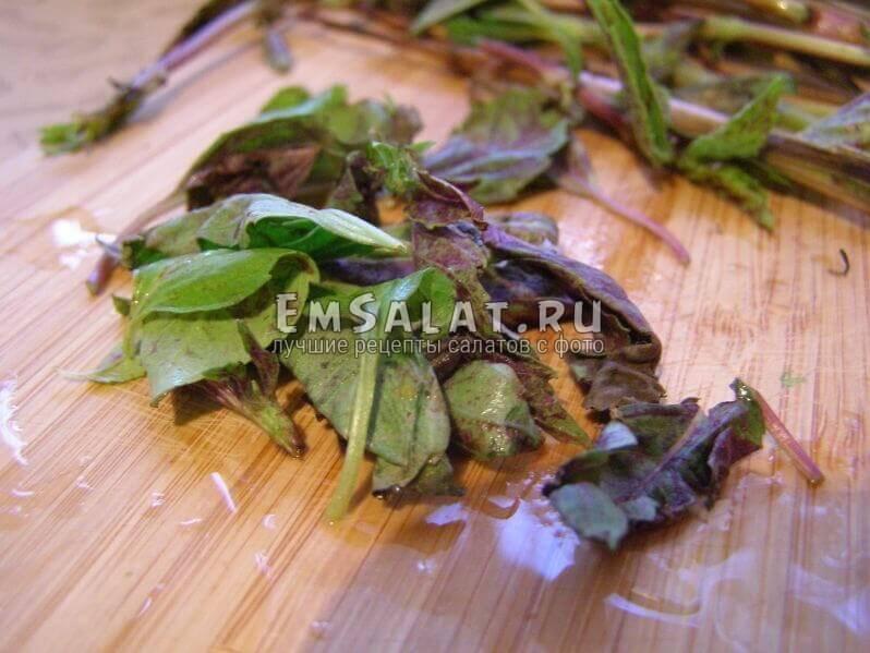 Базилик, оборваны листики